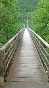 吊り橋01