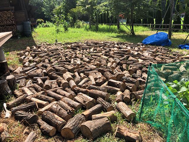(写真:8月10日 玉切りにされた木材)
